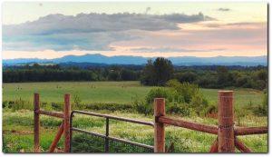 Ankeny Hill Farm Jefferson Oregon