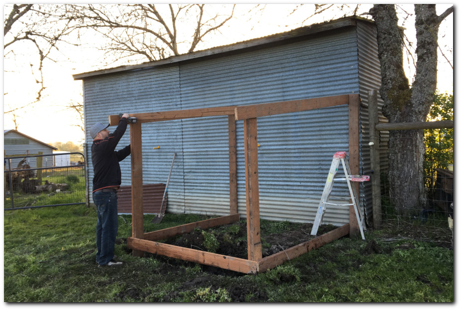 Building a chicken run frame