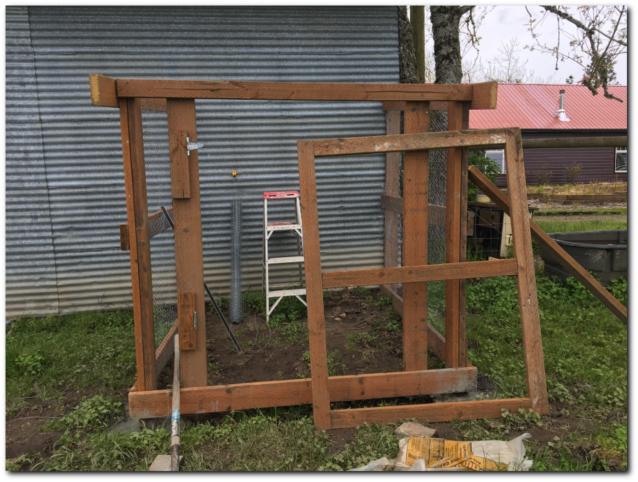Building the chicken run door