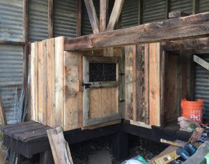 Old barn wood chicken coop