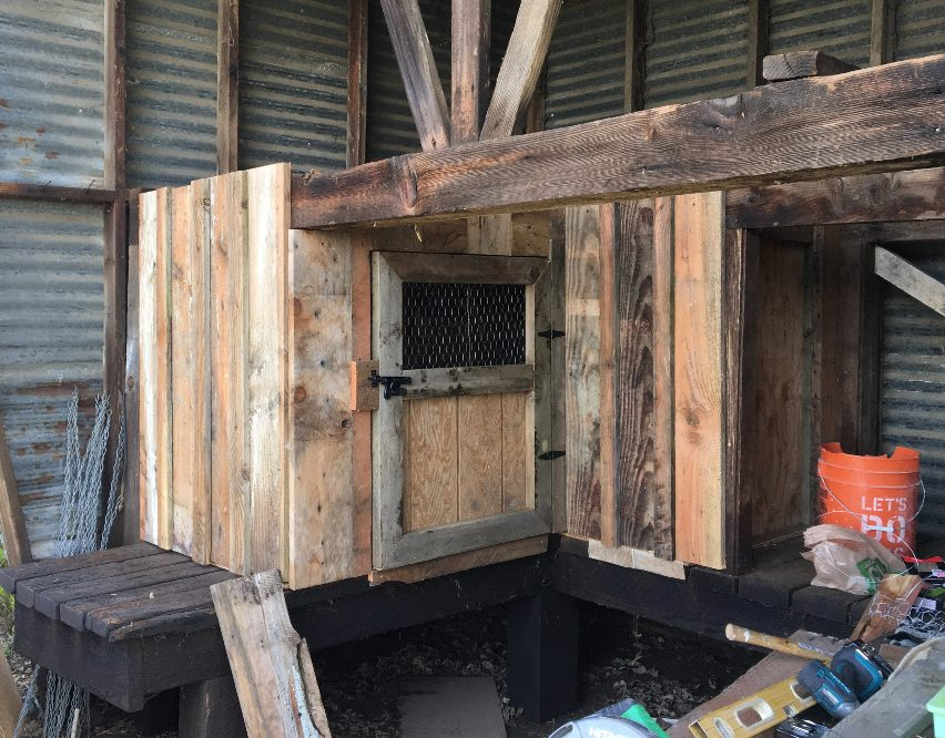 Building Our Chicken Coop With Old Barn Wood