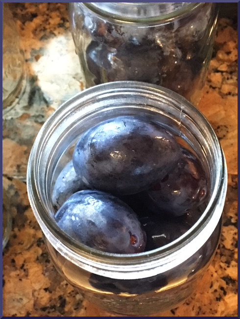 Fill canning jars with plums