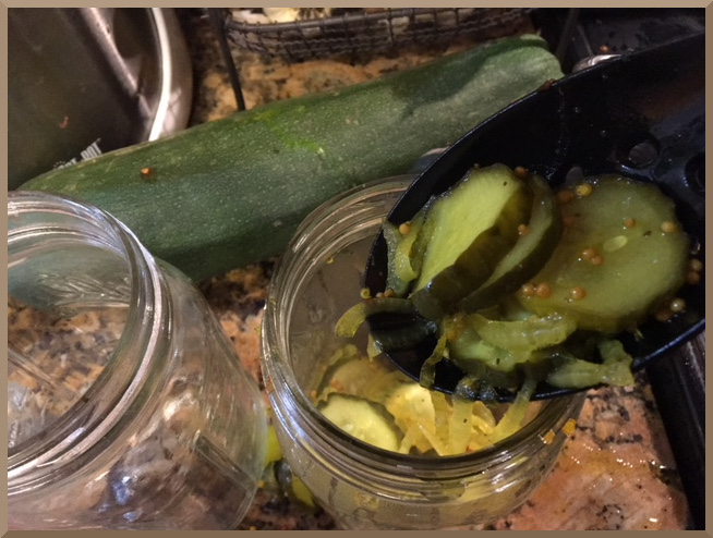 Fill canning jars with pickles