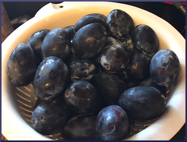 Canning Whole Plums-Delicious Spiced Purple Plums